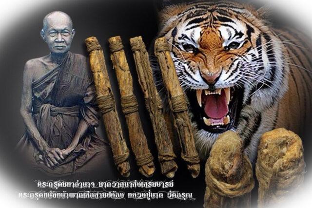 Takrut Tiger Forehead Skin LP Nak Wat Arun